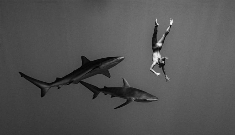 Model Playboy Foto Bugil Bersama Dengan Ikan Hiu di Laut